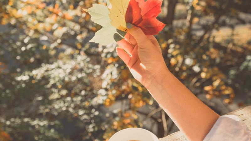 10 herbstliche Ideen, die dein Herz höher schlagen lassen werden