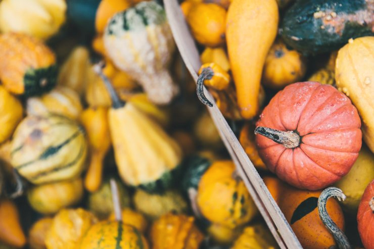 7 Herbstgerichte für gute Laune