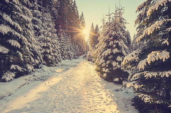 8 Tipps für eine besinnliche Winterzeit – günstig, schnell und einfach
