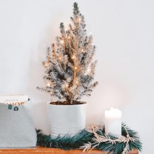 Unsere 10 Deko Must- Haves für die Weihnachtszeit
